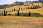 val_orcia