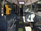 bus ataf interno