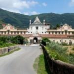 Il museo di storia naturale di Calci