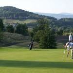 golf club generico