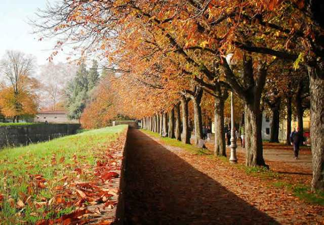 Skyscanner inserisce Lucca tra le 18 città europee da visitare
