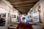 pisa_mostra_museo_grafica1