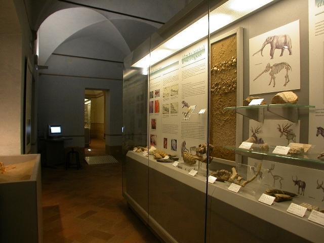 Museo Civico di Fucecchio