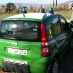 carabinieri_forestale_generica_pattuglia_vettura_auto_2017_04_21