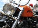 (foto gonews.it) Raduno Harley Davidson alla Mostra Internazionale dell'Artigianato
