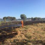 incendio_vab_san_miniato_vigili_del_fuoco_sterpaglie_via_gorgi_2017_07_13_4