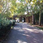 Viale Umberto I a Montelupo Fiorentino