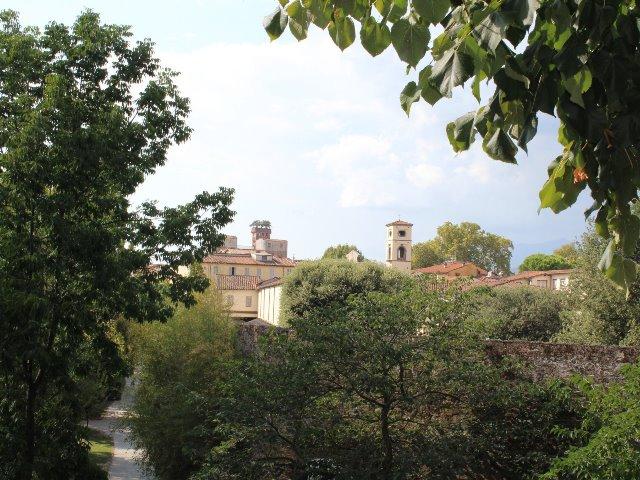 Lucca panorama generica