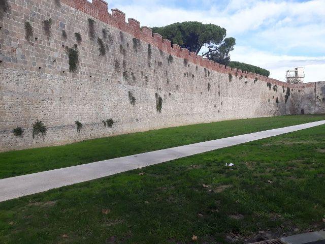 Illuminazione Da Esterno Pisa : Illuminazione giardino livorno impianti illuminazione giardini pisa