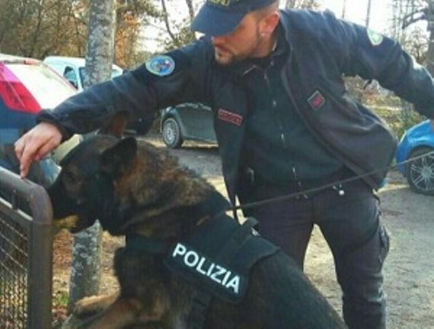 AMPER_polizia_stato_cane_antidroga_firenze