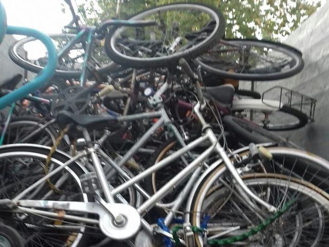 """Rimosse le bici abbandonate a Cascina: """"I proprietari le ritirino"""" - gonews"""