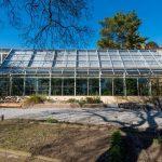 serra tropicale museo botanico universita pisa