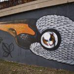 street_art_murales_firenze_generica_2018_2