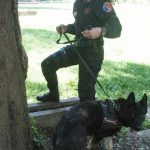 carabinieri_controlli_empoli_parco_mariambini_antidroga_unita_cinofila____5