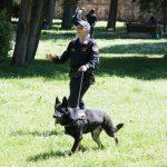 empoli_carabinieri_unita_cinofila-cane_antidroga_controlli_parco_mariambini_2018_04_22___9