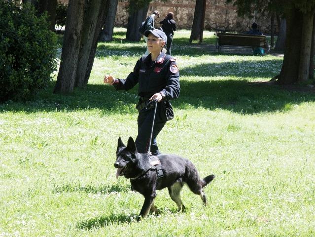 Cani indispensabili per le forze dell'ordine e di soccorso, convegno nazionale a Pisa