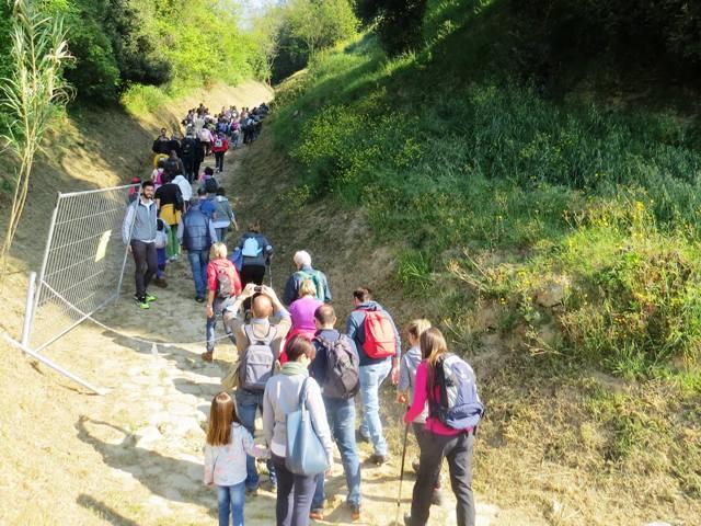 Nella riserva di Montefalcone il 2019 inizia con visite guidate