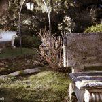 ADSI.Pisa_Villa Medicea Buti_giardino