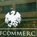 confcommercio_pisa_generica_5