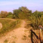 empoli_avane_ amianto_ (7)