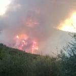 incendio_monti_massa_cozzile_2018_09_28___2