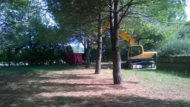 piazza_de_andre_fornacette_calcinaia_lavori_pini_2018_09_10