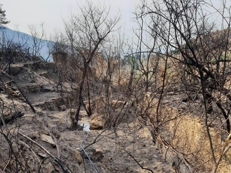 Incendio Monte Serra, cena solidale a I Cristalli con Confesercenti