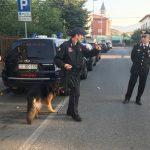 carabinieri_unita_cinofila_cane_antidroga_pistoia_1