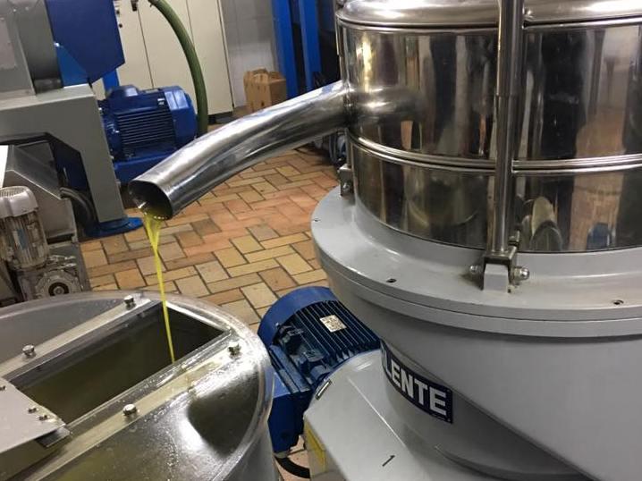 Rubati 50mila litri d'olio in un oleificio a Vinci