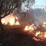 incendio_rotoballe_fenice_capanne_massa_marittima_2018_10_06