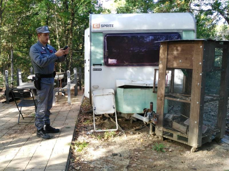Prefabbricati abusivi nei boschi di Greve, denunciata una persona