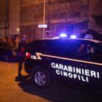 carabinieri_cinofili_cane_antidroga_1