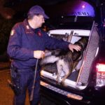 carabinieri_cinofili_cane_antidroga_2