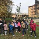 figline_autumnia_festa_albero_2018_11_09_10