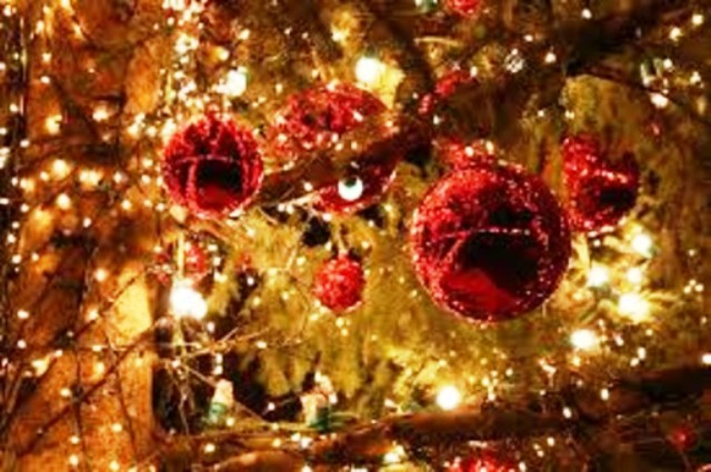 Natale a Livorno, altre 10 strade illuminate dal contributo dei commercianti