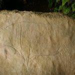 thumbnail_Grotta del Romito_COSENZA_masso con incisione di Uro