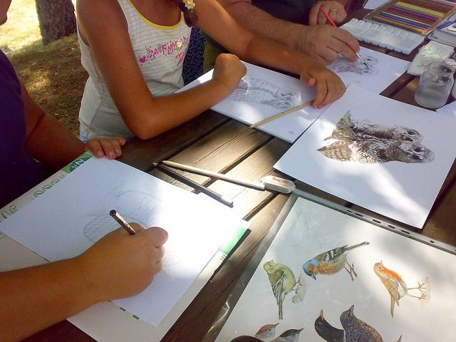 Workshop disegno naturalistico