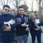 poggianti canile gattile2