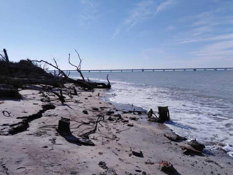 Lavori di sistemazione della spiaggia di Vada, oltre un milione di euro