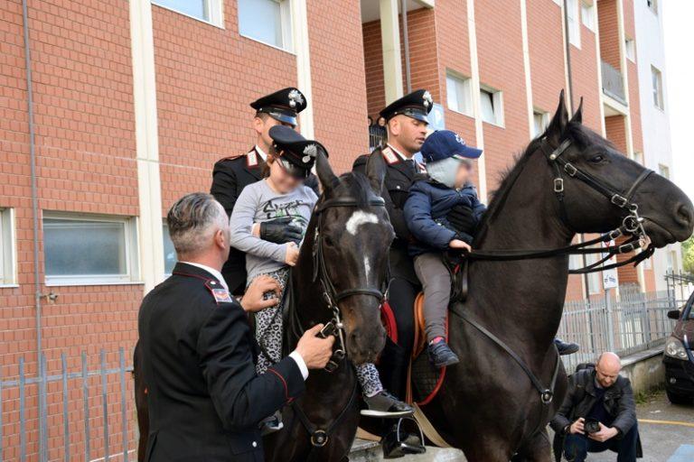 Carabinieri_Cavallo_Scotte_4