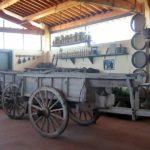 padule_fucecchio_museo_civilta_contadina_2019_03_19