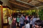 calci_universita_pisa_galleria_primati_museo_storia_naturale_2019_04_19