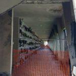 cimitero_sant_andrea_empoli_sopralluogo_cioni_2019_05_16___1