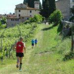 thumbnail_passaggio-lungo-vigna-a-Badia-a-Passignano