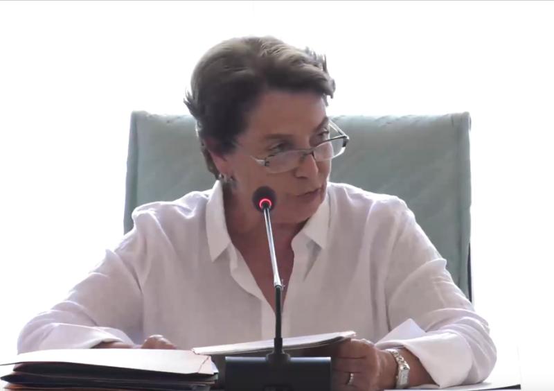 """Deputata Ciampi (Pd): """"Ceccardi ha tre incarichi, rinunci almeno ai 65mila euro di Salvini"""""""