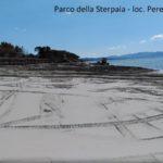 Mare_Livorno_Bibbona_ Marina_Campo_Costa__2