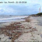 Mare_Livorno_Bibbona_ Marina_Campo_Costa__3
