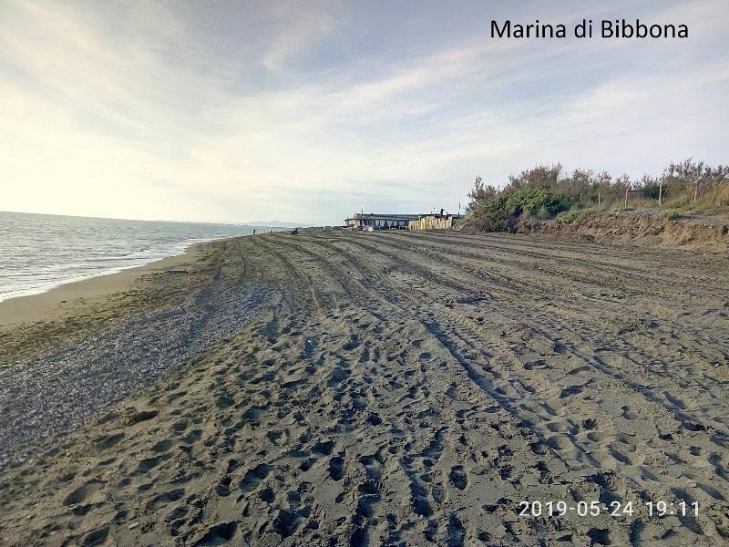 Mare_Livorno_Bibbona_ Marina_Campo_Costa__30