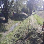 Sfalci-Valdelsa-06.2019-26