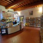 biblioteca_comunale_renato_fucini17
